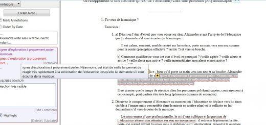 Lucifox annotations1